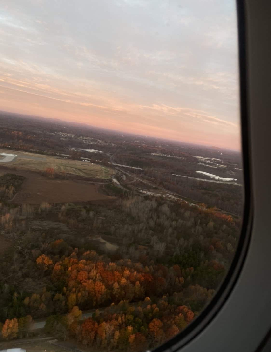 picture of leaves changing while the sun rises