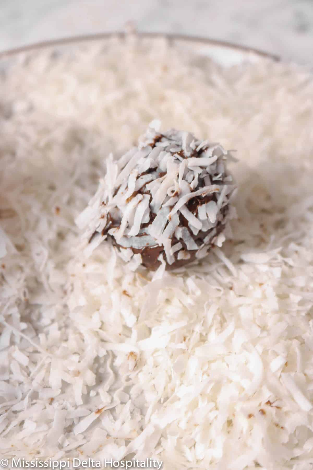 chocolate truffle covered in coconut flakes