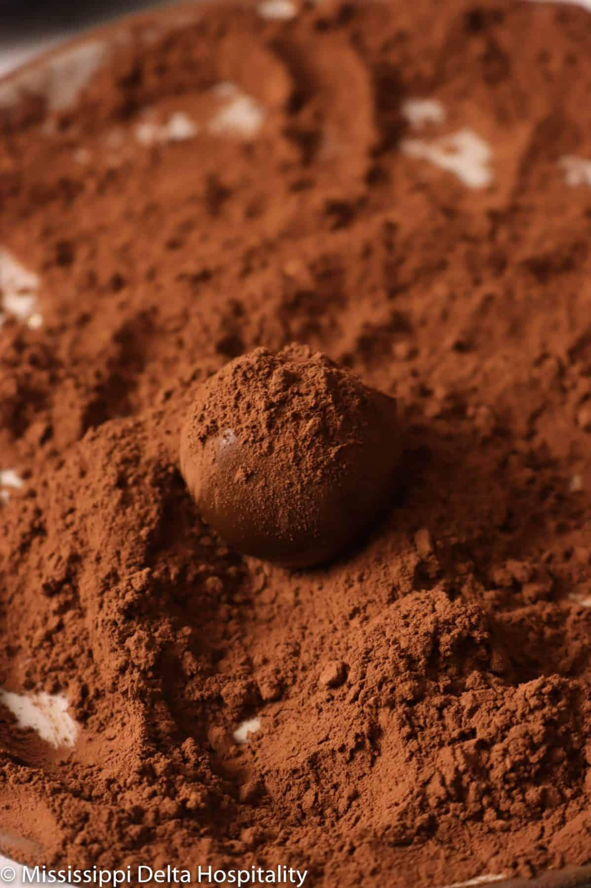 chocolate truffle with cocoa powder sprinkled over it