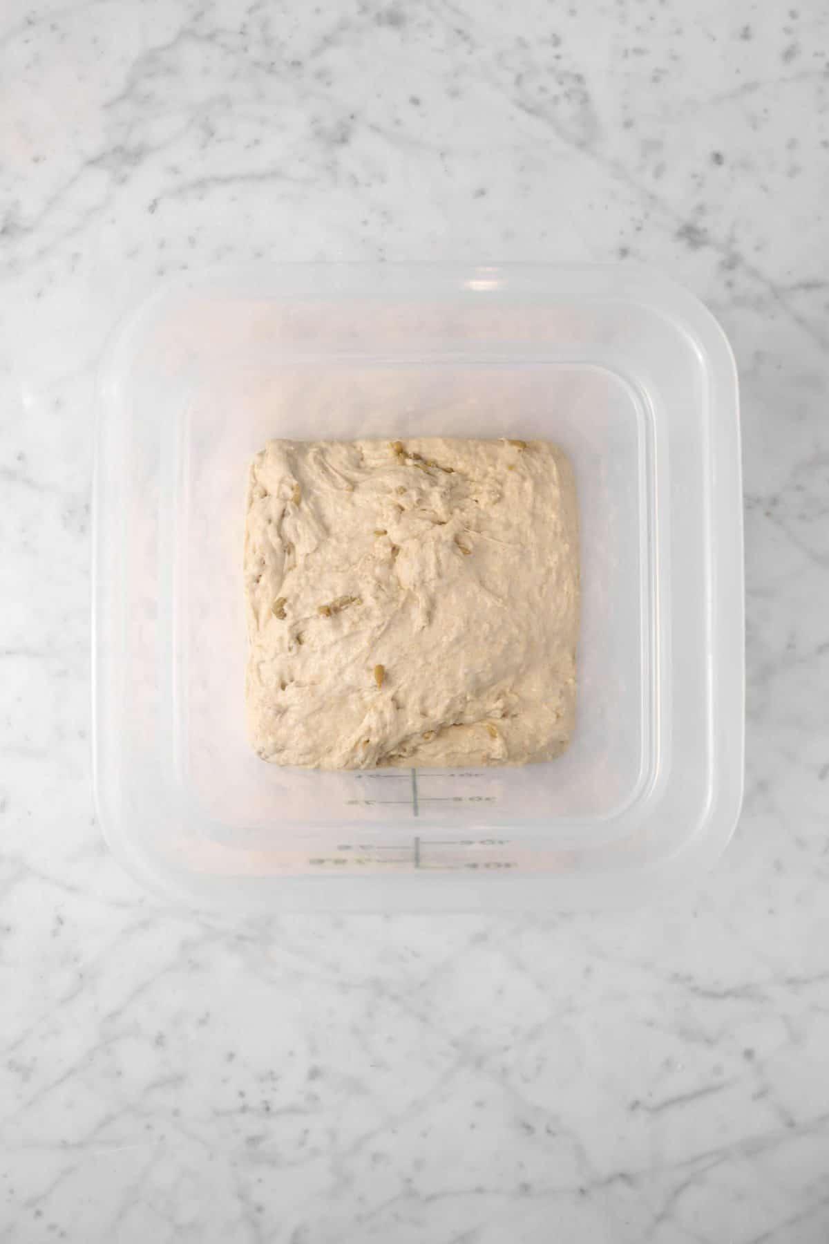 sourdough in a plastic container