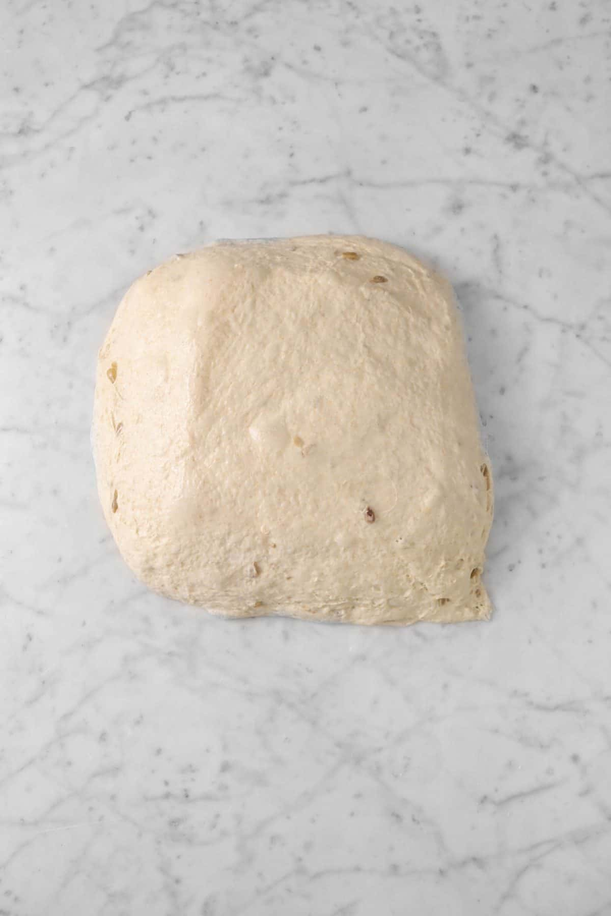 dough turned out onto marble counter