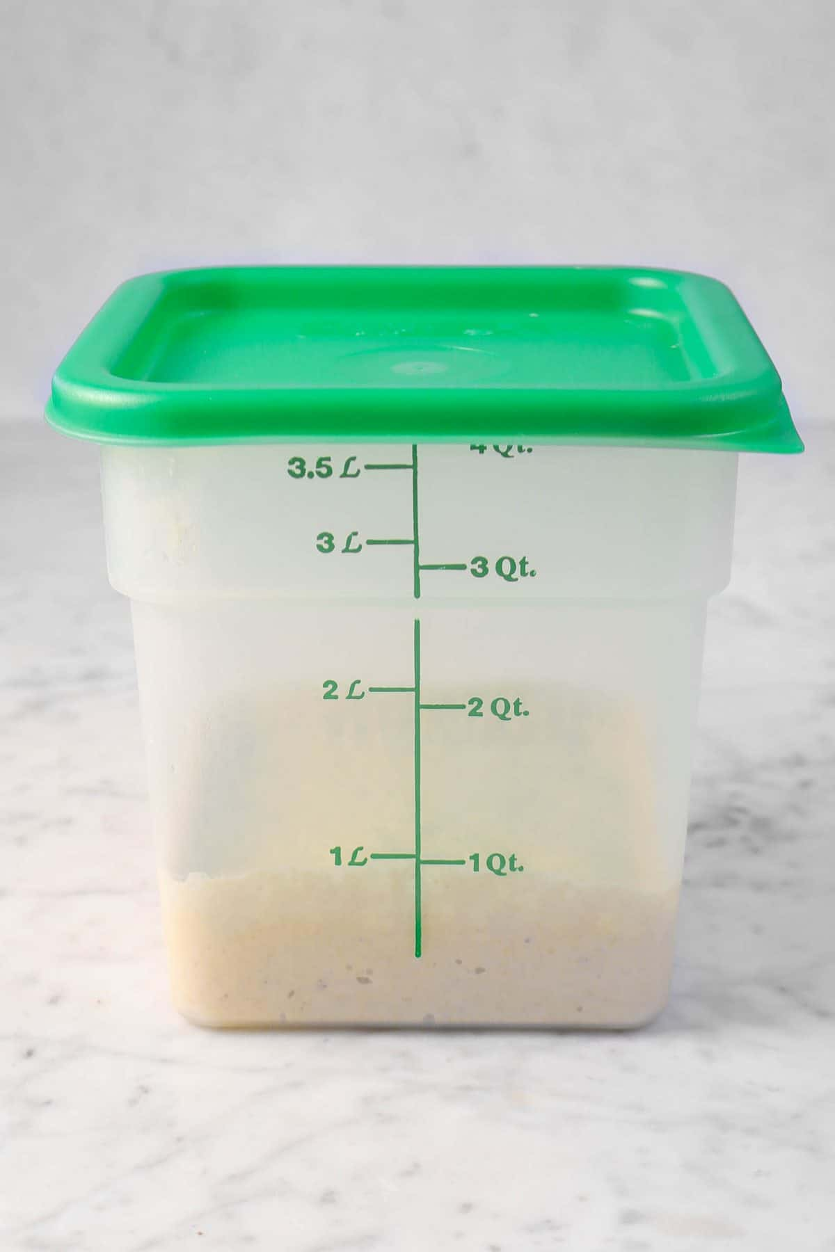 dough in a dough rising bucket on a marble counter