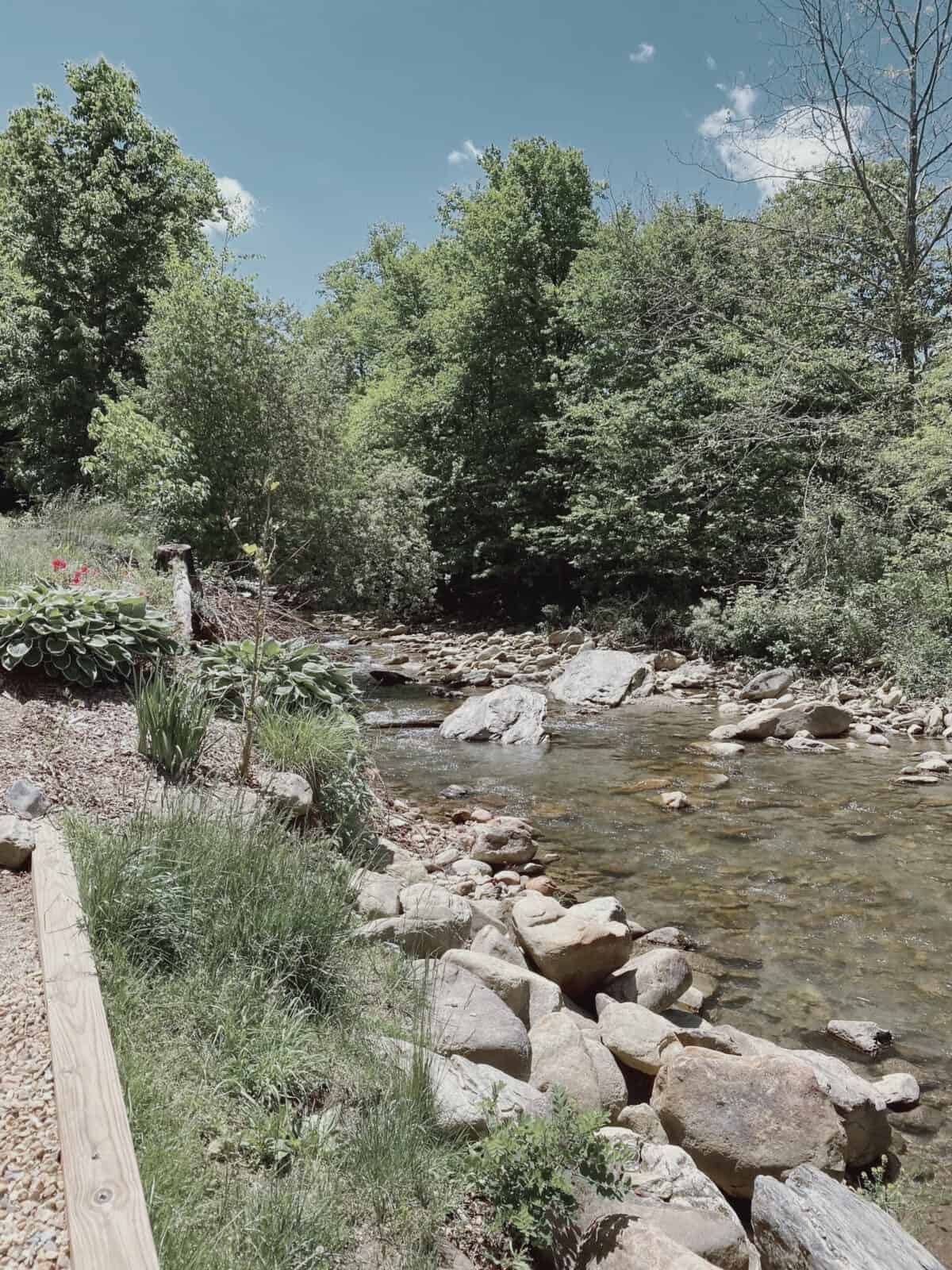 stream with rocks, trees, and blue sky