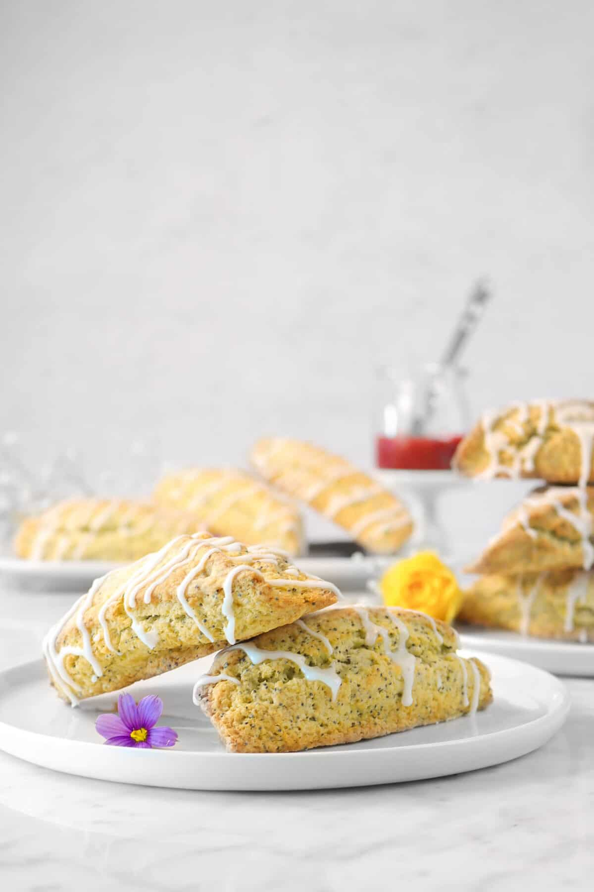 two lemon poppyseed scones on a white plate with fresh flowers and more scones in the background