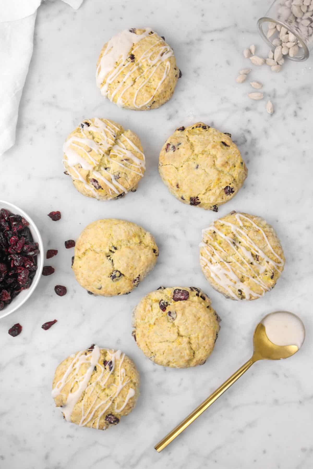 seven scones on a marble counter with cranberries, cardamom pods, and a gold spoon
