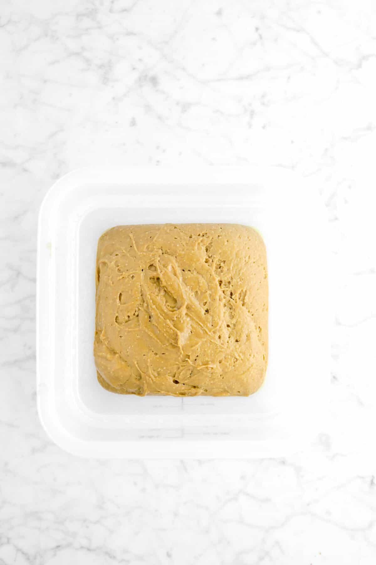 gingerbread beignet dough risen in plastic container