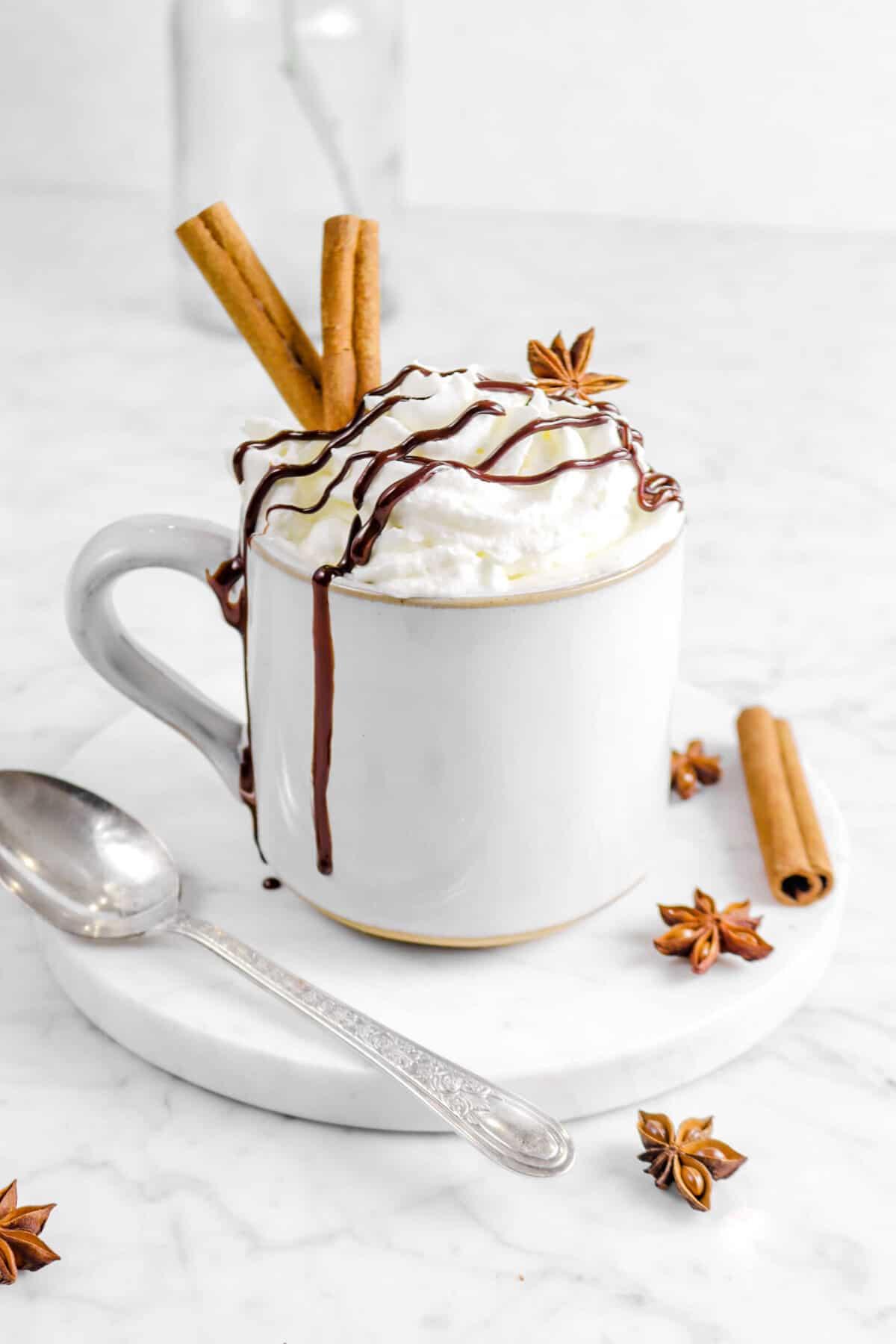 mug with whipped cream, chocolate sauce, cinnamon sticks, and star anise