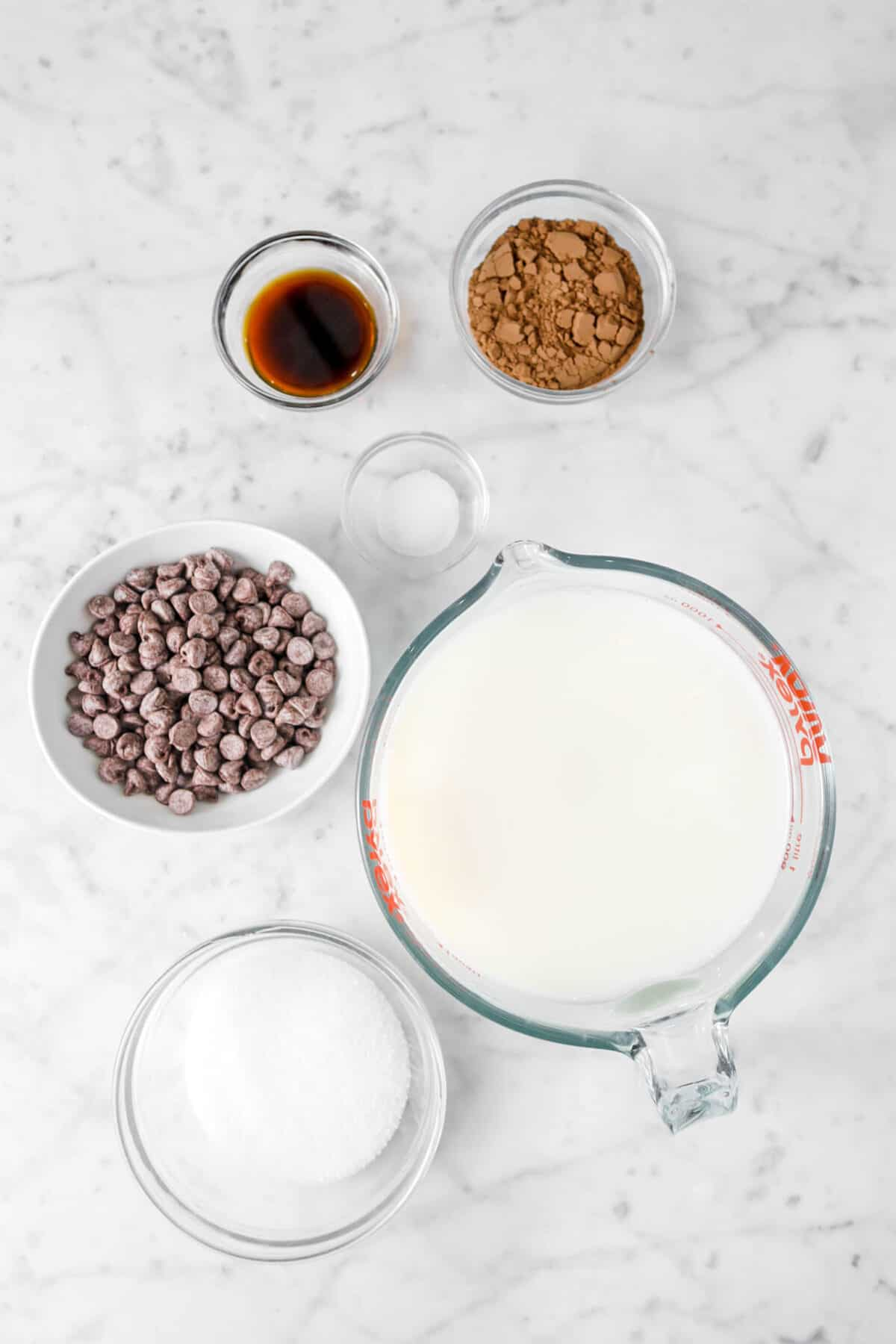 cocoa powder, vanilla, salt, chocolate chips, milk, and sugar in glass bowls