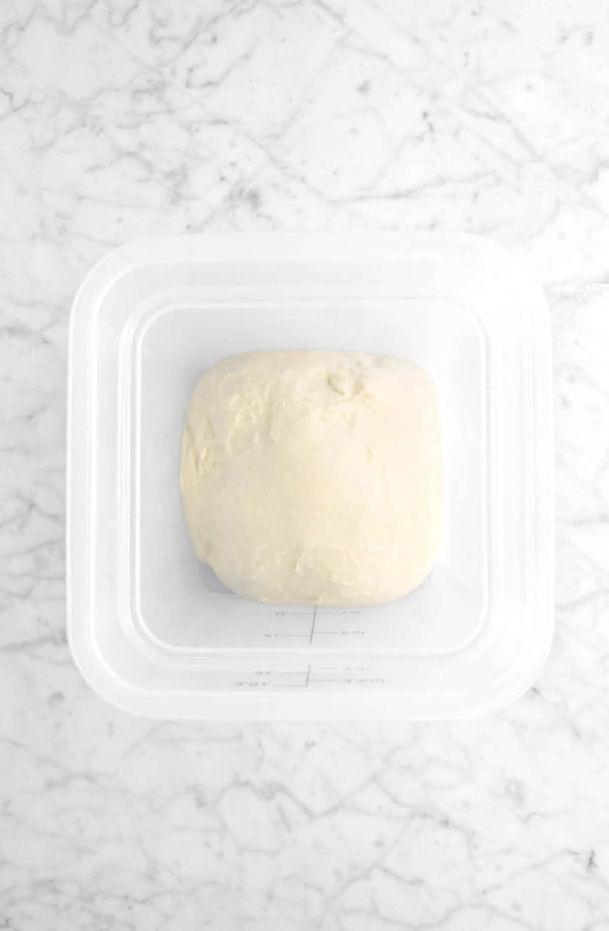 dough in dough rising bucket
