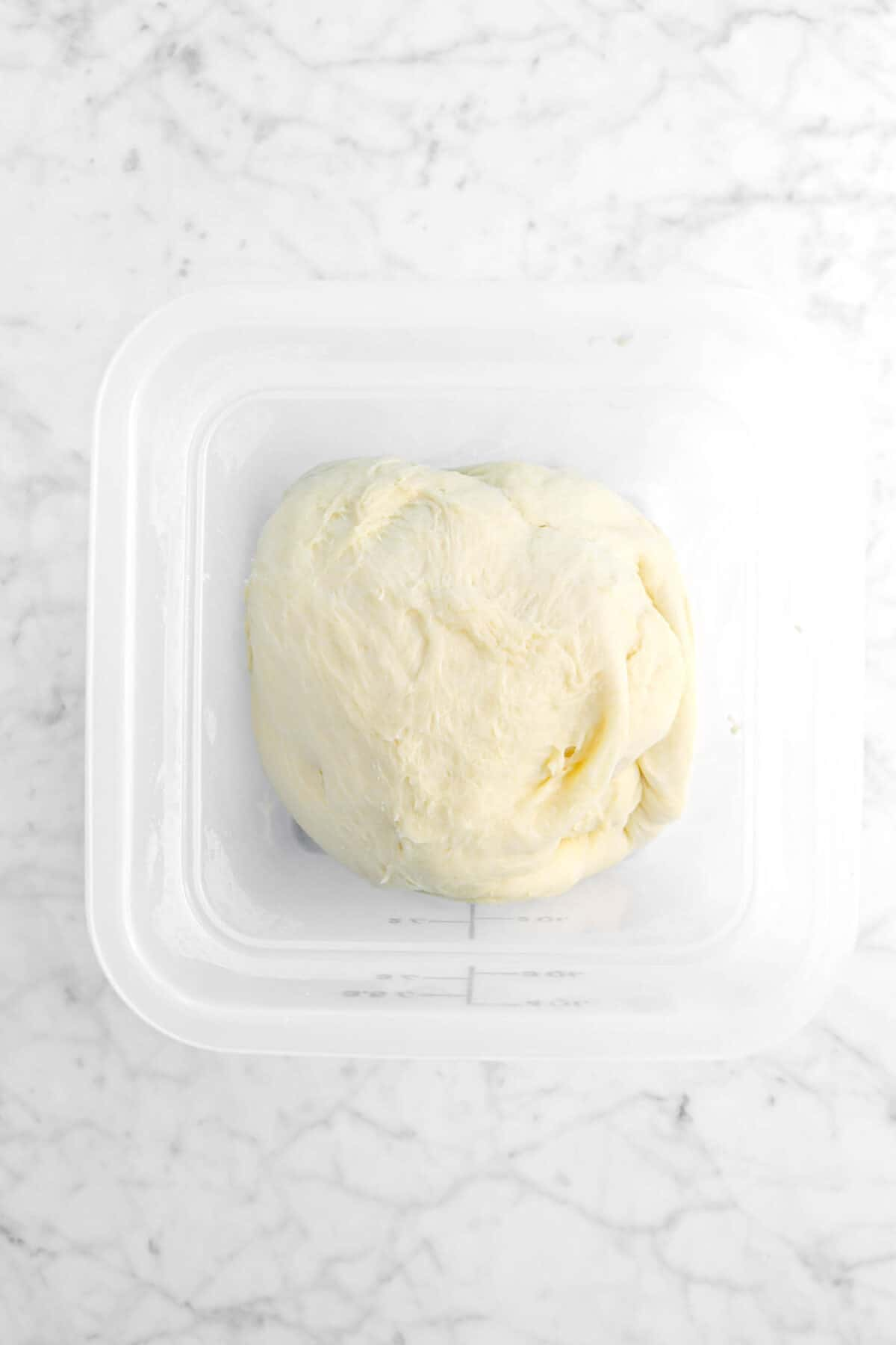 dough in the plastic container on marble counter