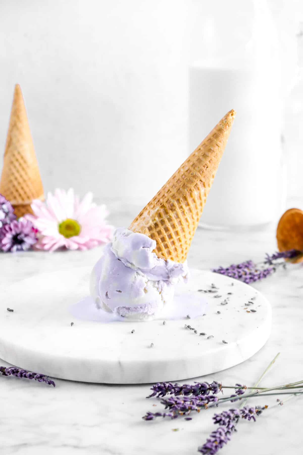 two scoops of lavender ice cream upside down on marble plate with dried lavender, flowers, two cones, and glass of milk