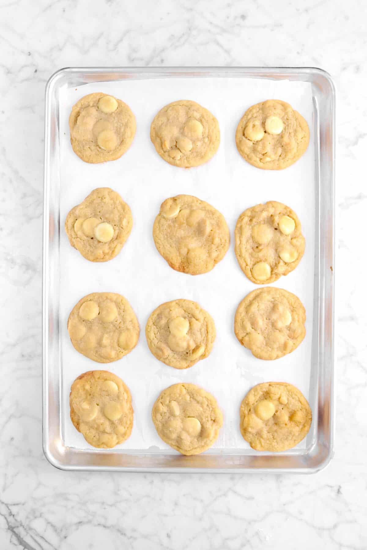 twelve baked white chocolate macadamia nut cookies