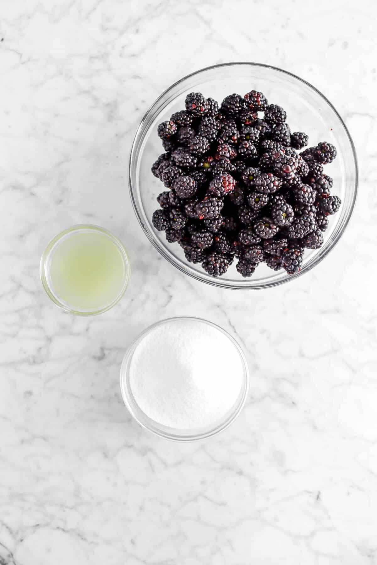 blackberry jam, lemon juice, and sugar in glass bowls