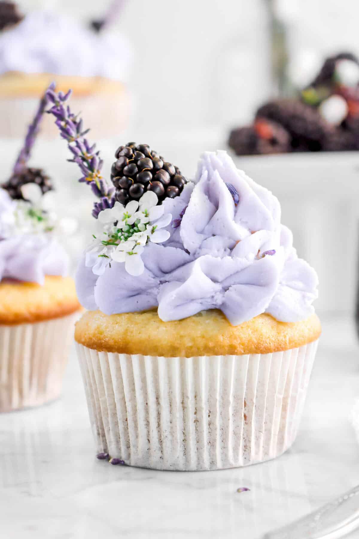 close up of blackberry lavender cupcake