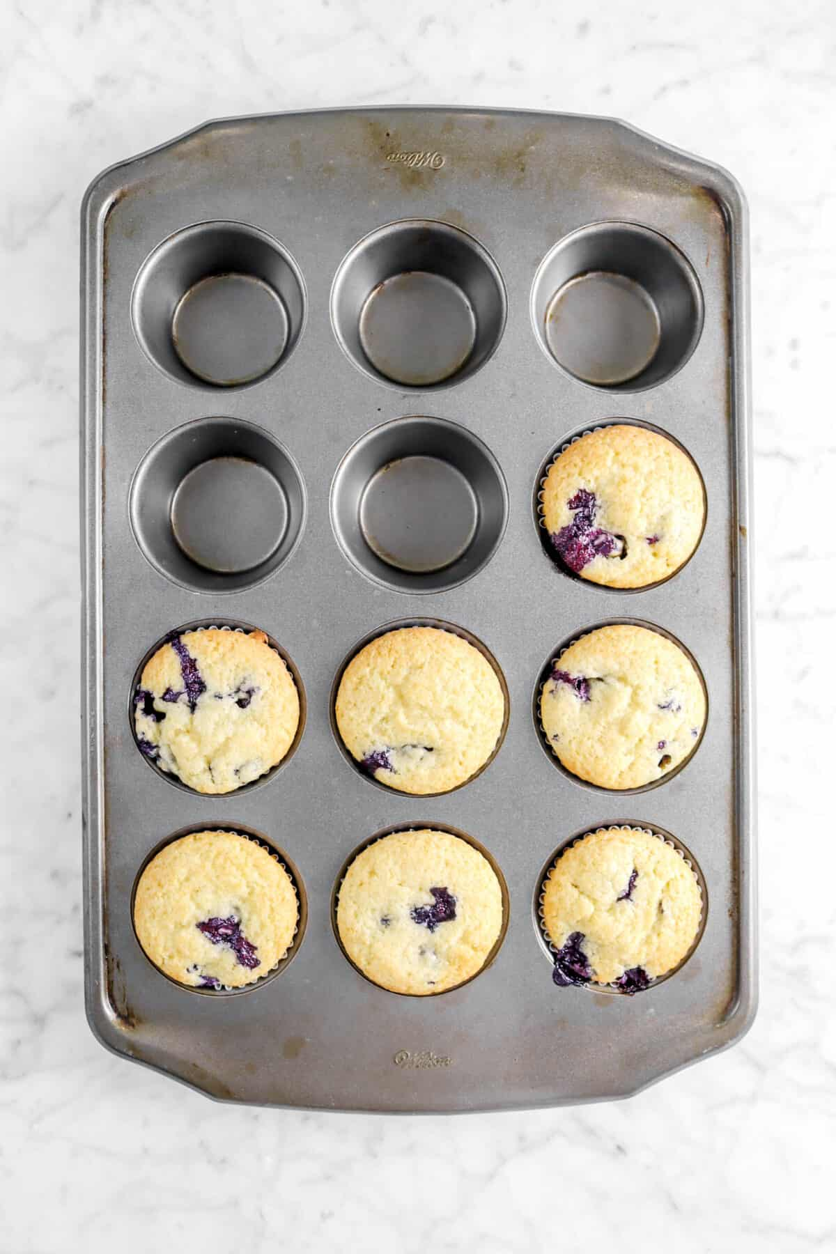 seven baked blueberry muffins in muffin pan