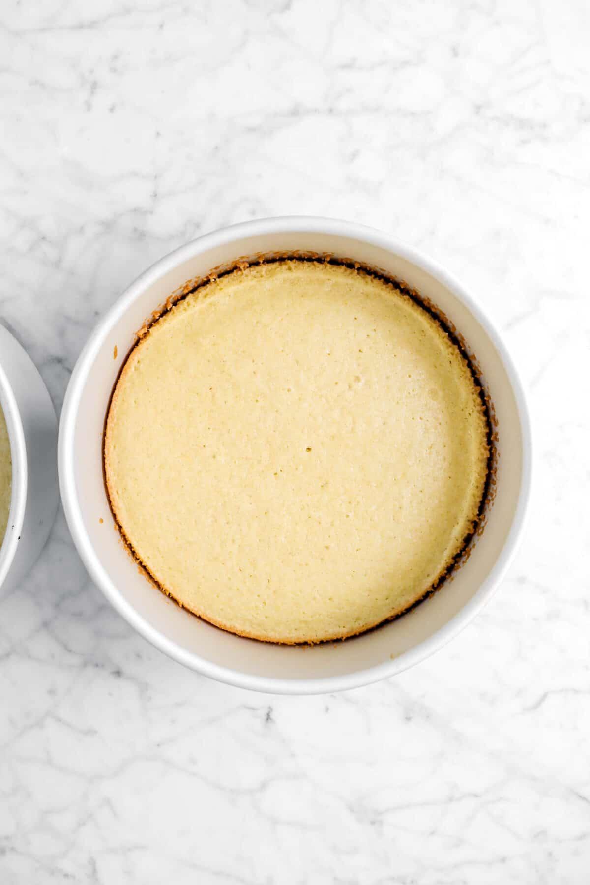 baked cake layer in circle cake pan