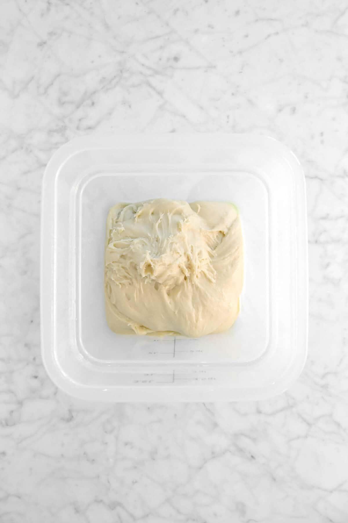 dough in plastic bucker