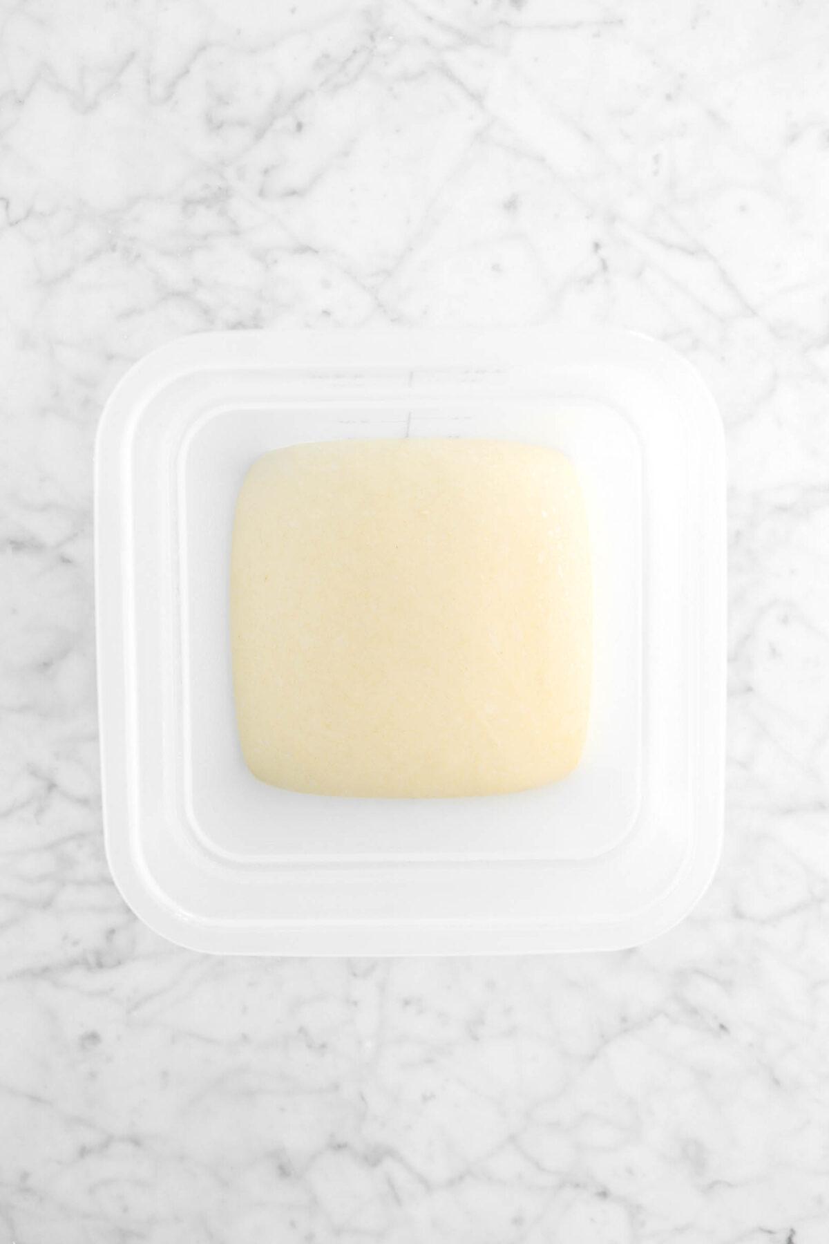 dough doubled in bulk in plastic bucket
