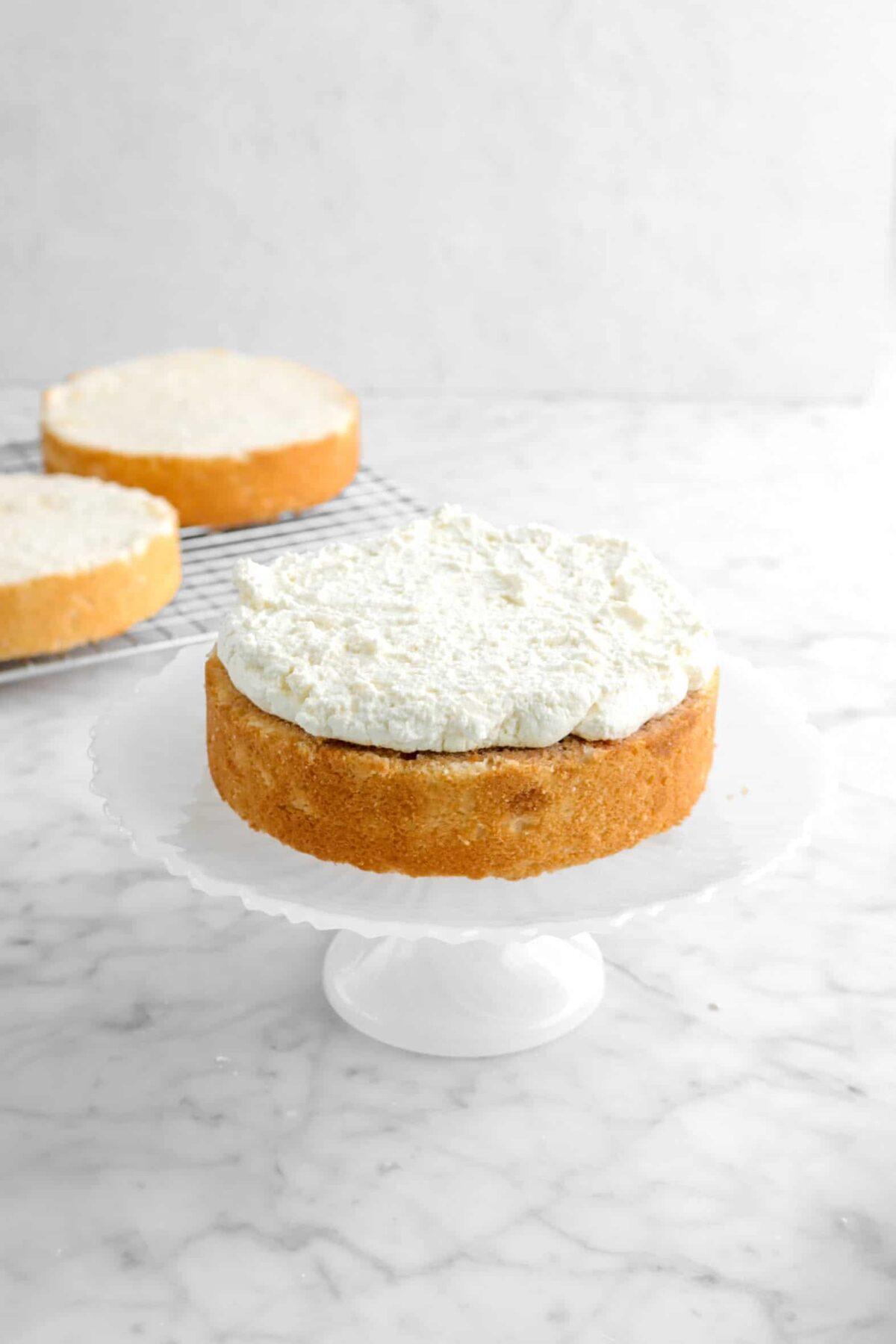 tiramisu filling added on top of cake layer
