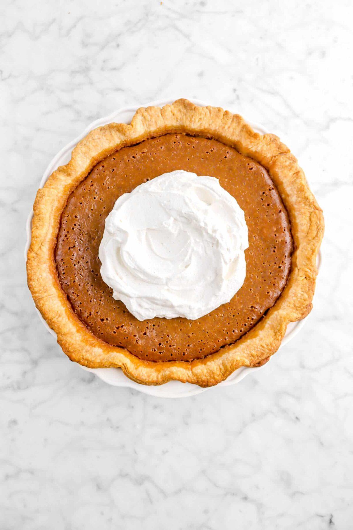 whip cream added on top of pumpkin pie